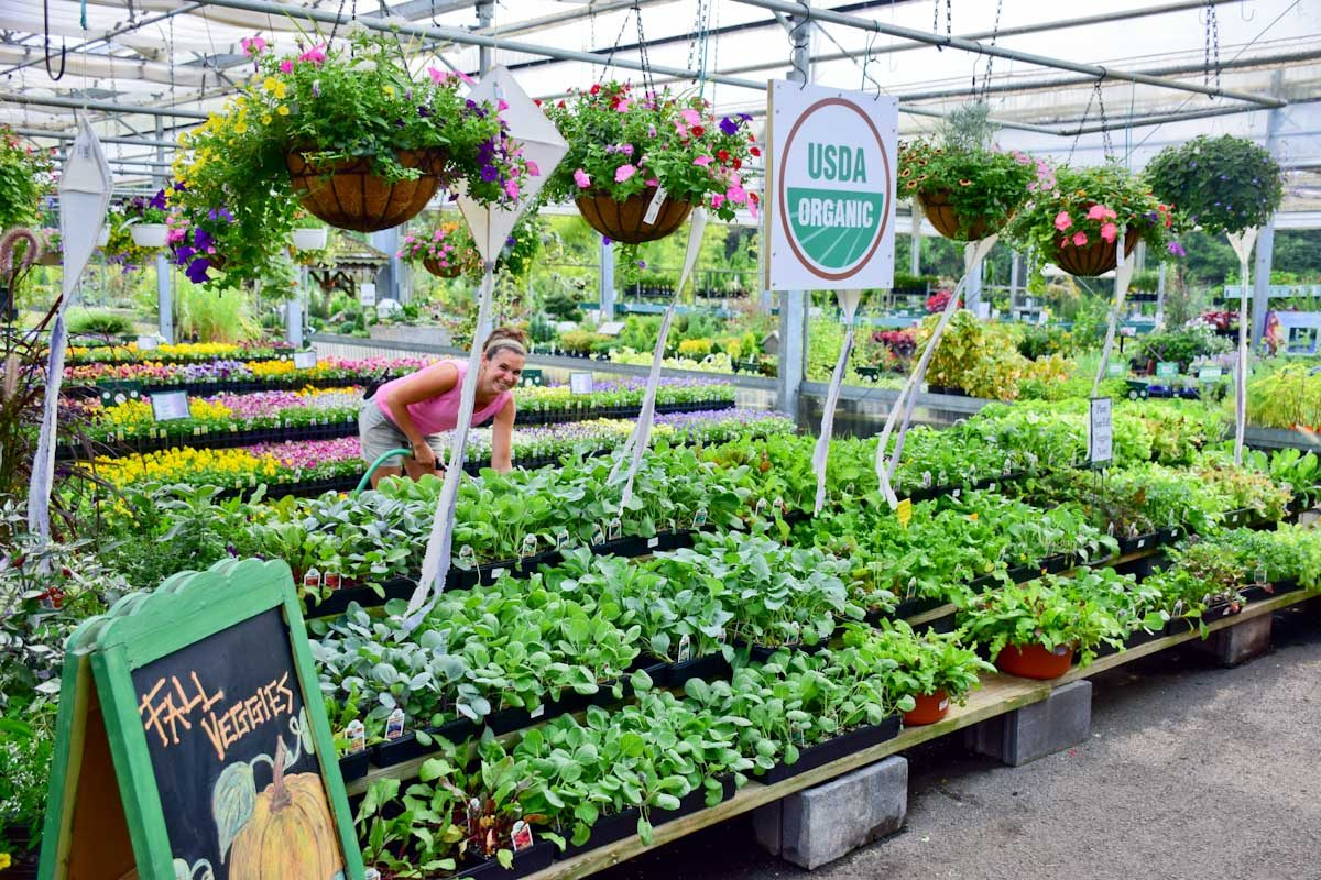 Charmant Merrifield Garden Center Jobs
