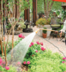 Bring Out The Best In Your Azaleas And Rhododendron Merrifield Garden Center