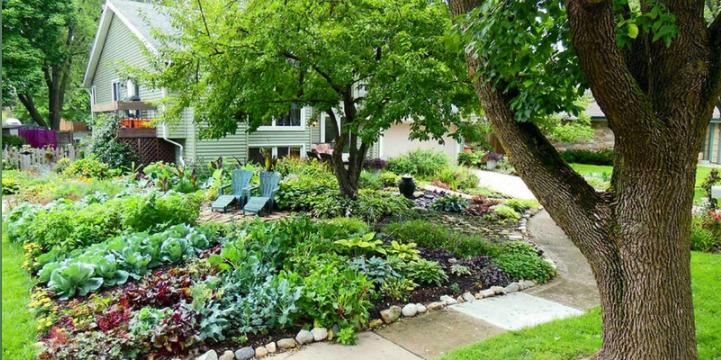 Seasonal Foods You Can Grow At Home Merrifield Garden Center