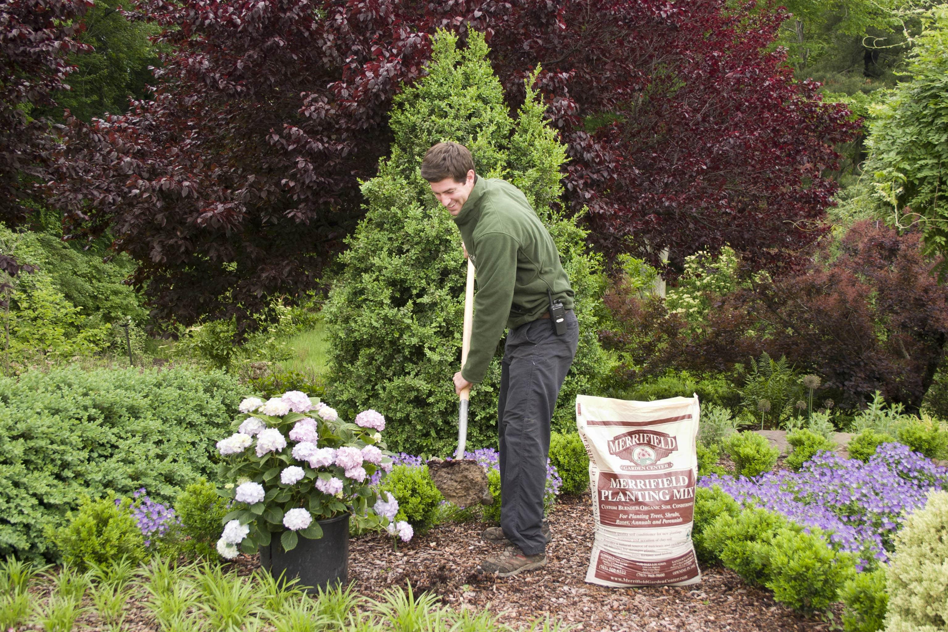 Services Plantings Deliveries Min Merrifield Garden Center