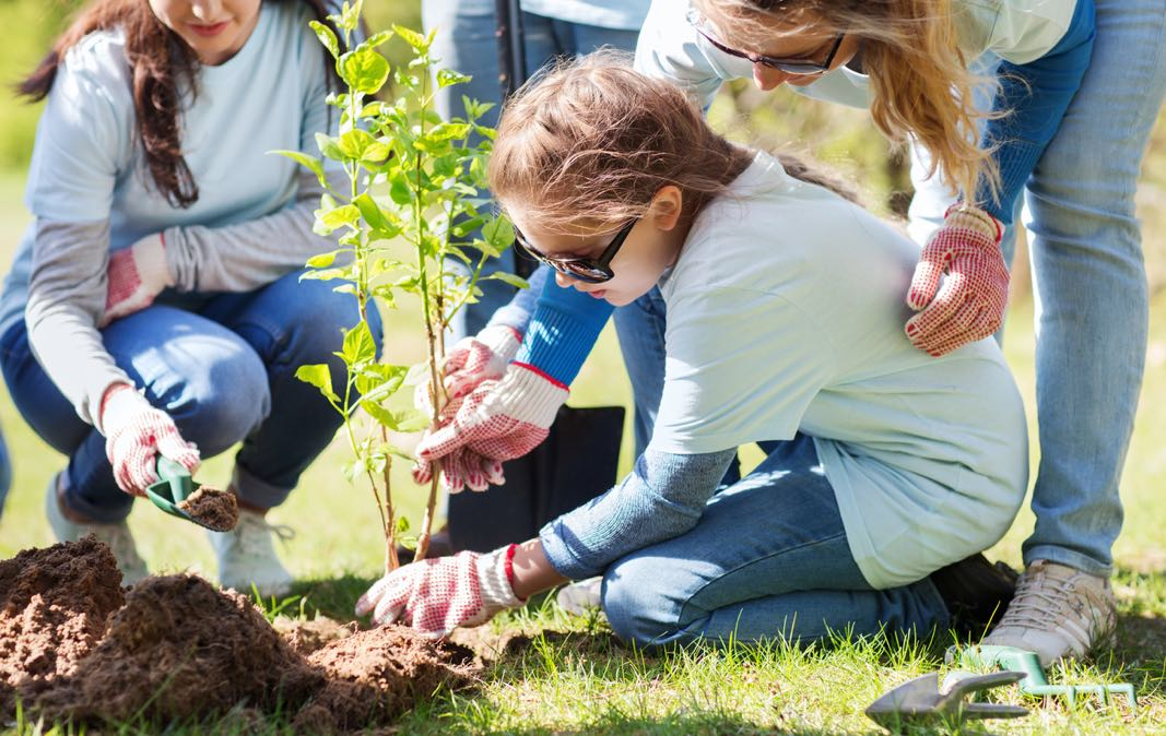Community Involvement Merrifield Garden Center