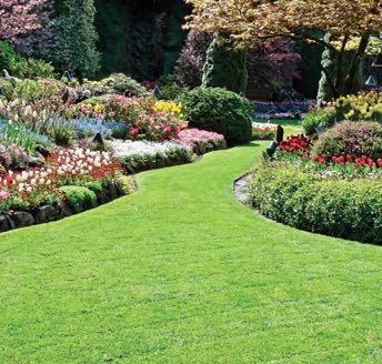 Landscape design services merrifield garden center - Merrifield garden center fairfax va ...