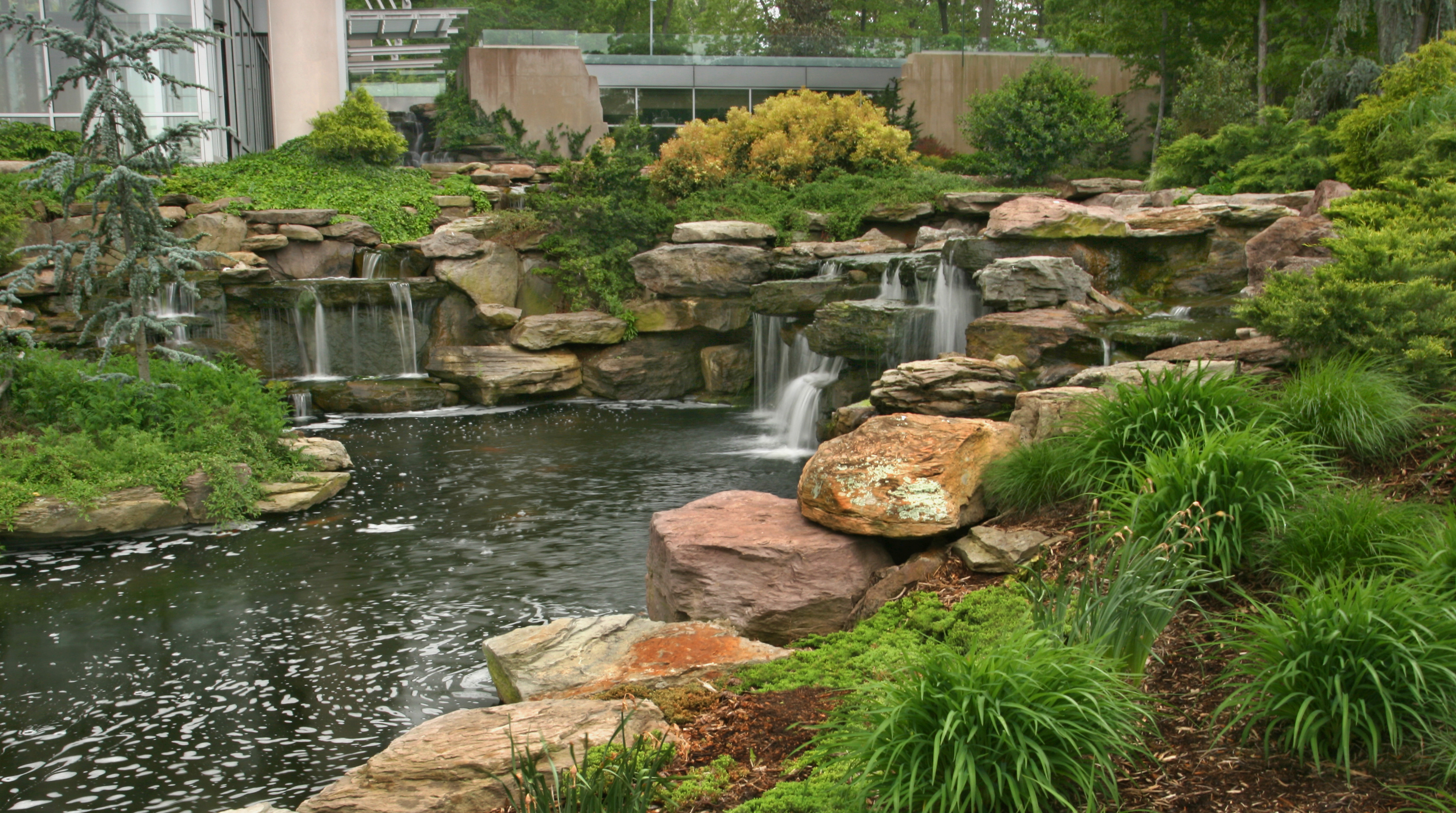 Natural Pond with Waterfall