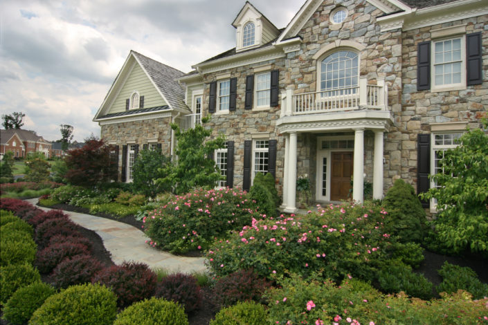 Foundation Planting with Roses, Stone House, Boxwood Plantings