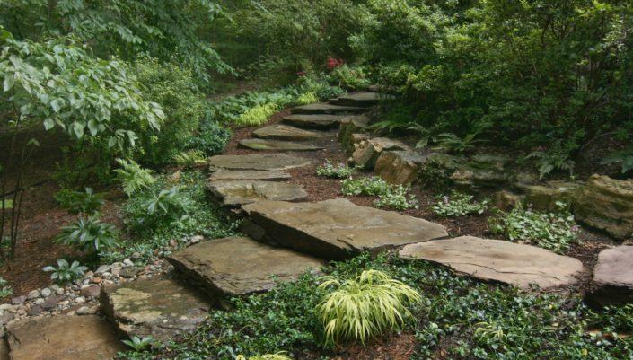 Natural Stepping Stones