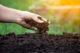 Merrifield Garden Center - Soil Foundations