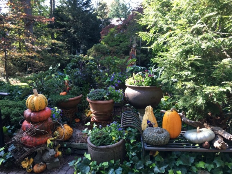 Bulb Containers in the Landscape