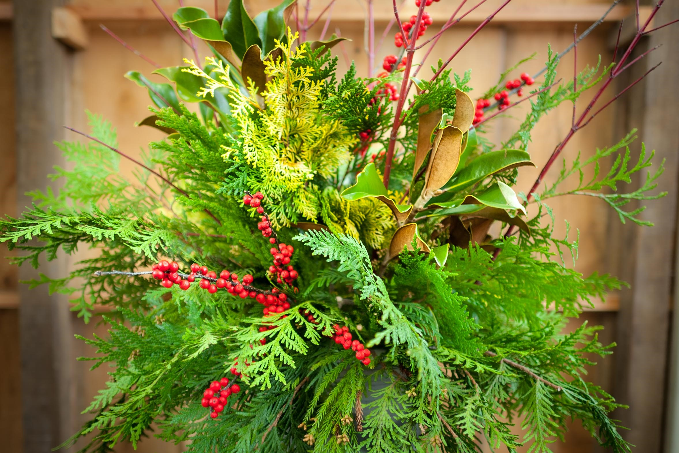 Fresh Greens, Holiday Decor, Outdoor Container