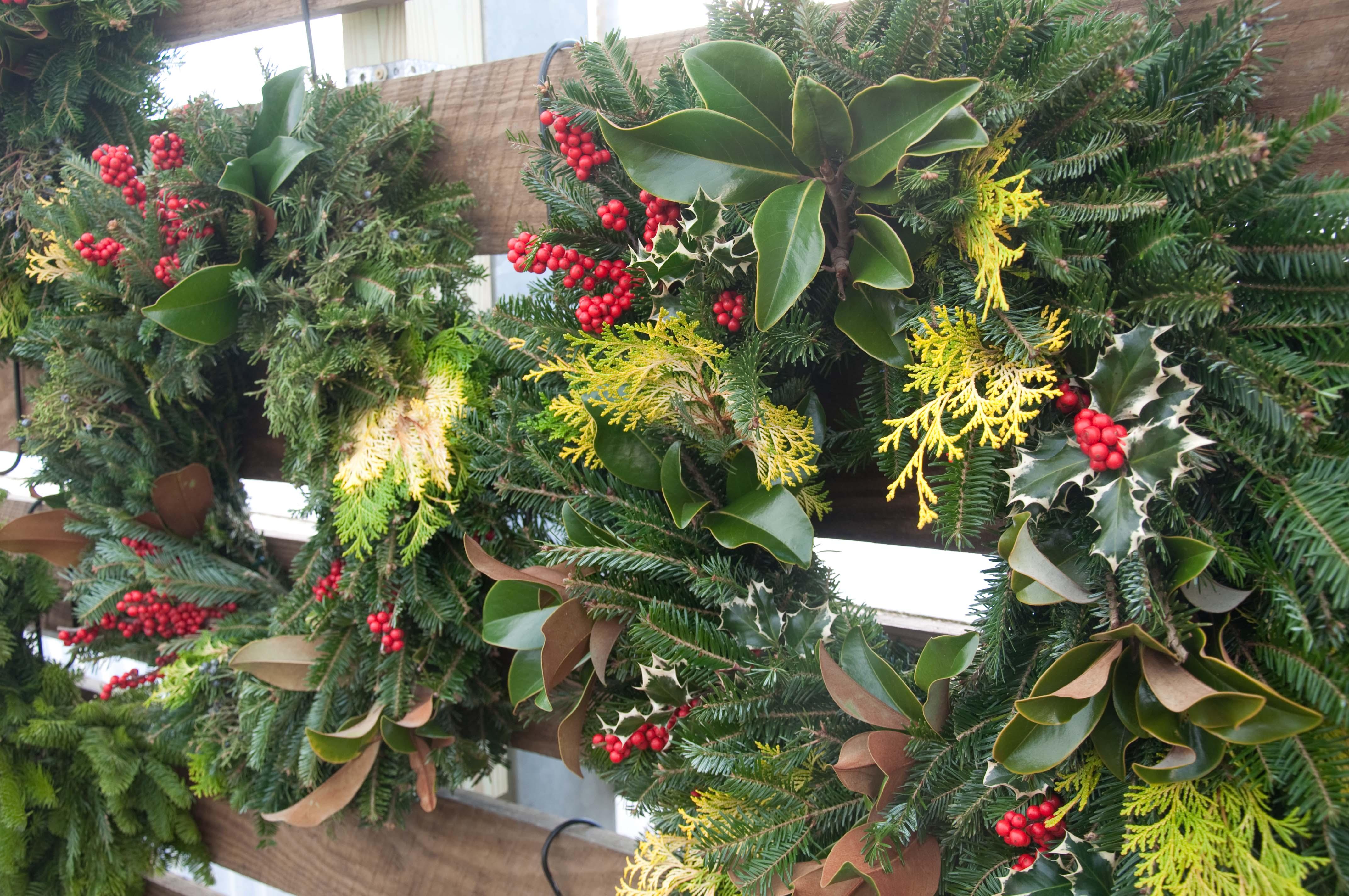 Fresh Holiday Wreaths Christmas Shop Merrifield Garden Center