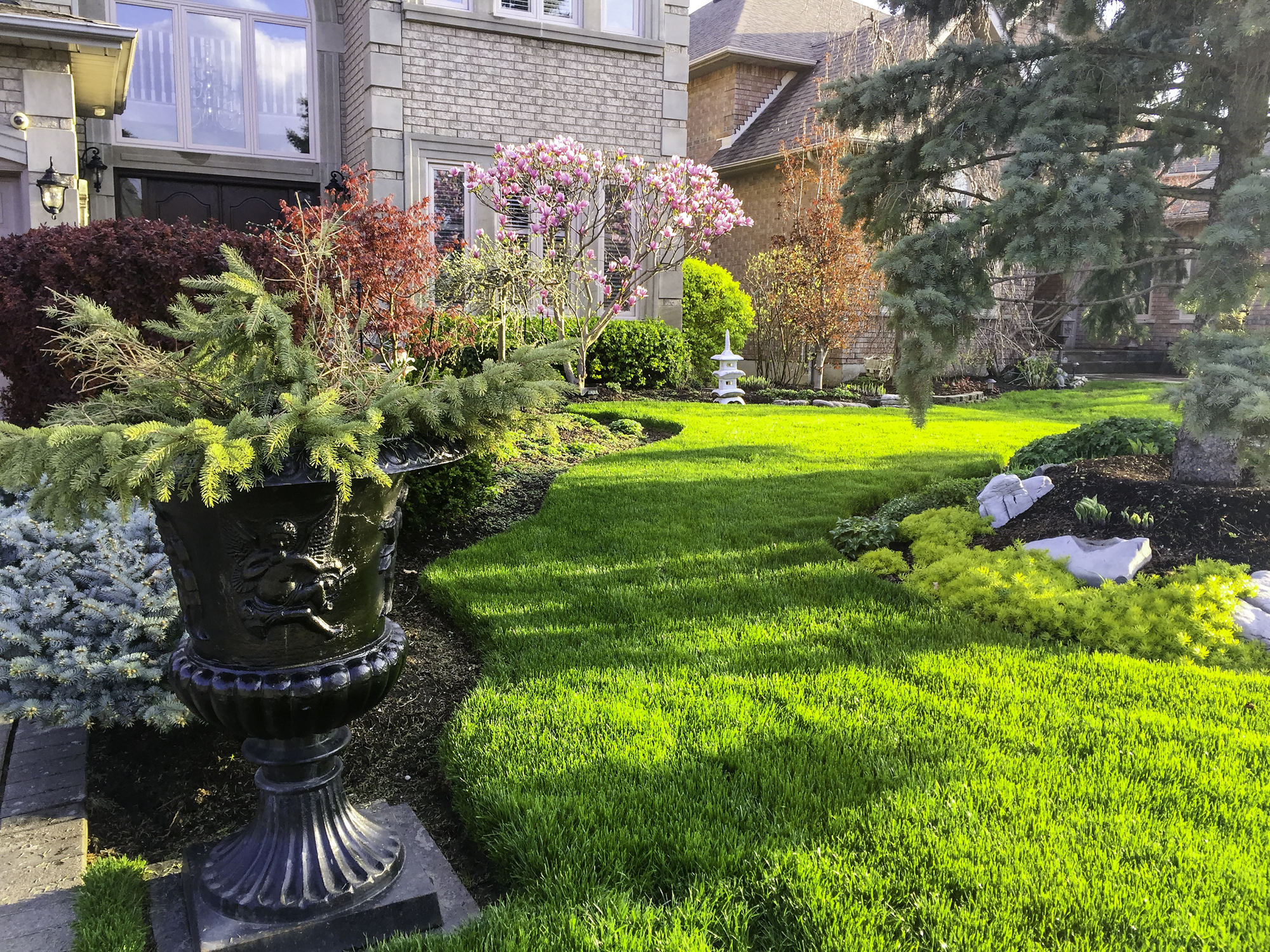 Plant Combinations For Curb Appeal Merrifield Garden Center