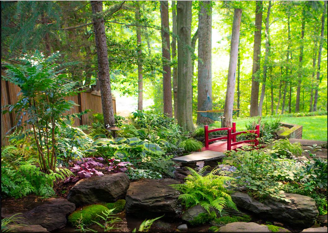 Woodland Garden with Footpath