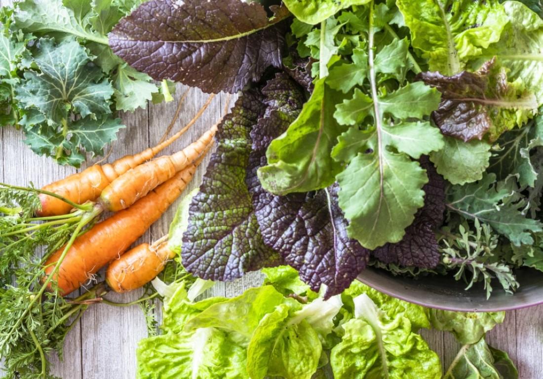 ISTOCK Cool season lettuce, carrots, vegetables