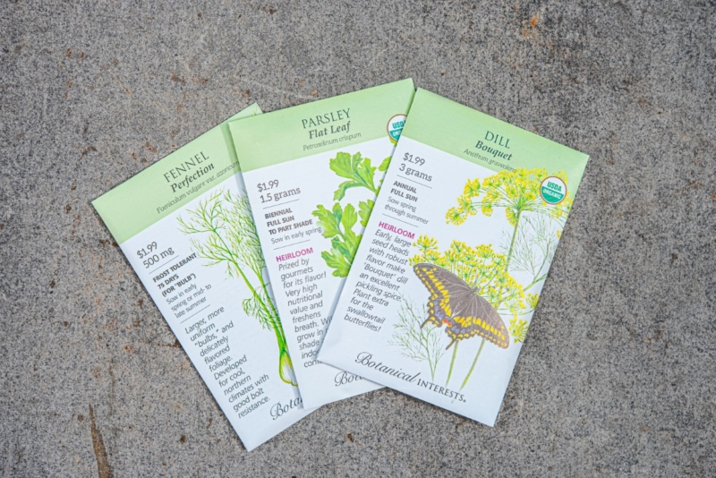 Cool season herb seeds, parsley, fennel and dill