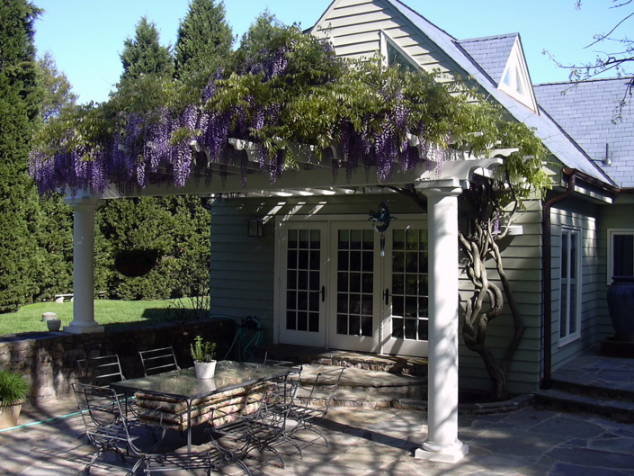 White Pergola on Patio, Wisteria