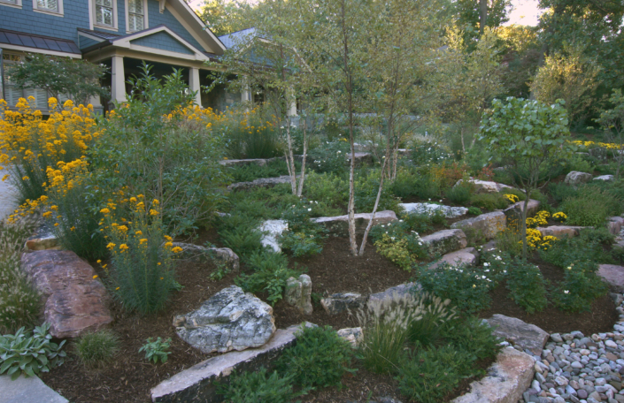 Rock Garden with Perennial Plantings