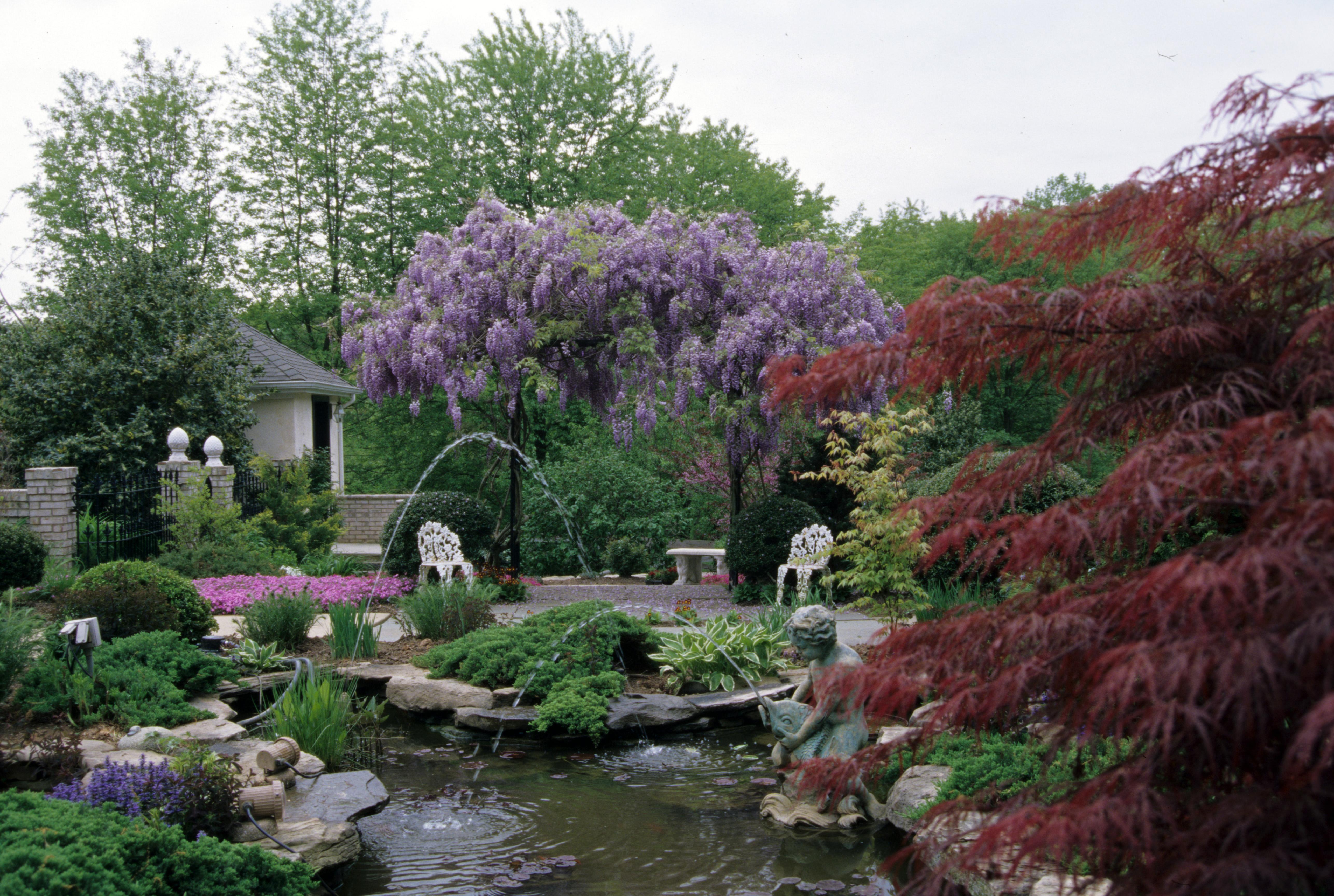 Pond with Wisteria Arbor