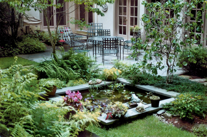 Patio, Pond and Fern Plantings