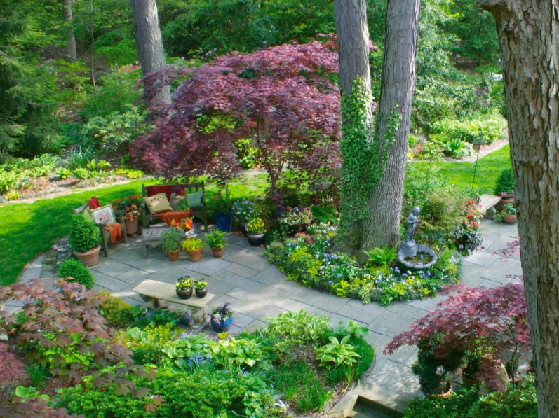Patio with Border Plantings